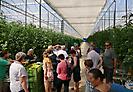Ausflug ins nahe Tomatenland